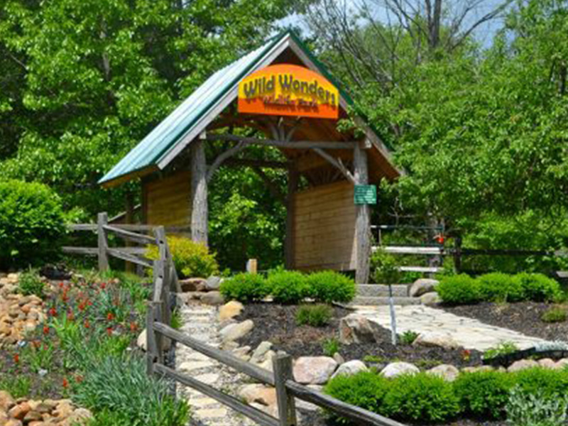 HNC_Pics_All_0022_Howell-Nature-Center-Wild-Wonders-Banner-1024x319